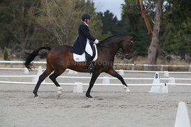 SI_Festival_of_Dressage_300115_Level_9_SICF_0479