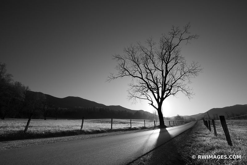 CADES COVE LOOP ROAD SUNRISE SMOKY MOUNTAINS BLACK AND WHITE APPALACHIAN LANDSCAPE