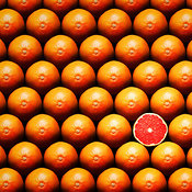 Sliced grapefruit standing out between a group of hole grapefruit