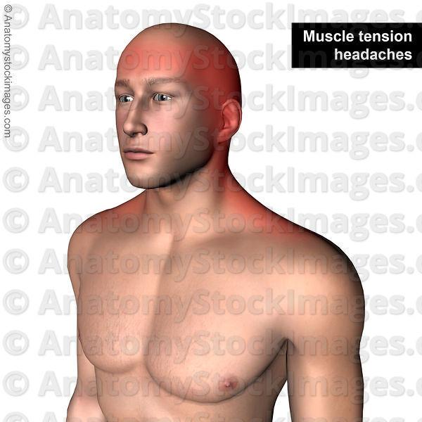 nieuw medicijn tegen artrose