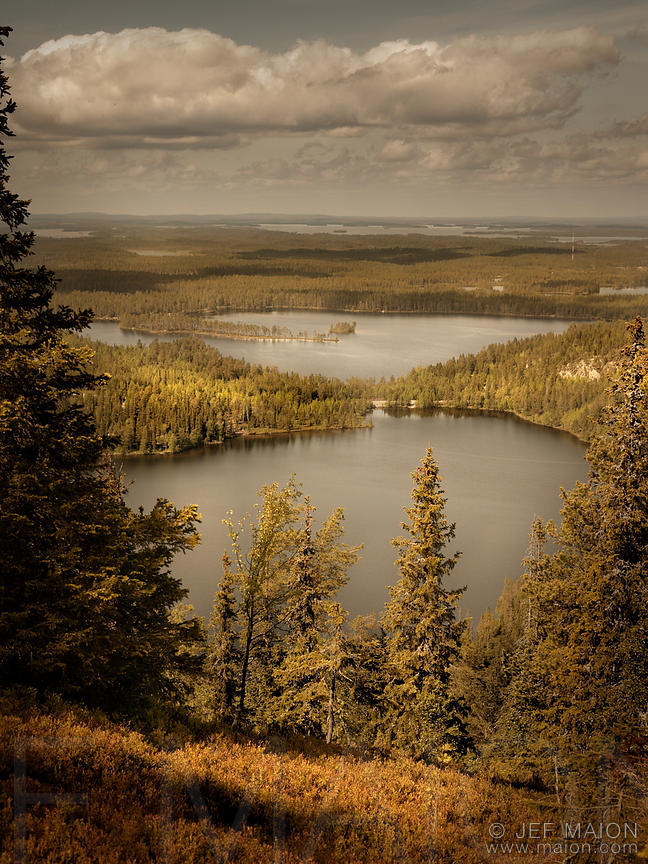 Lakes and taiga from above