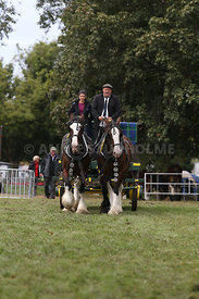 HOY_230314_clydesdales_3544