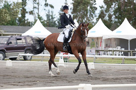 SI_Dressage_Champs_260114_040