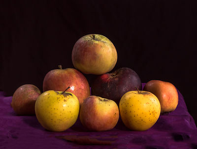Family Heirloom Portrait: Apples