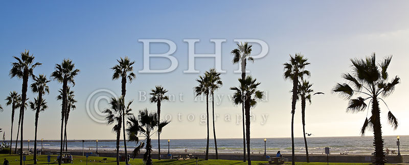 Mission Beach Photo