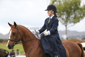 Canty_A_P_131114_Side_Saddle_1233