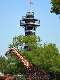 Zoo Tower