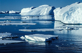 Icebergs and Ice-Floes