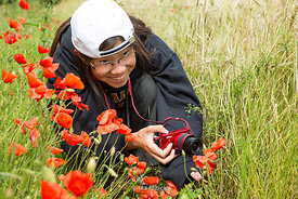 A girl taking photographs of papaver rhoeas.