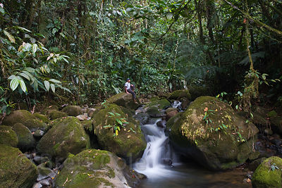 The photographer's assistant poses in a tributary to the Rio Penas Blancas, Las Nubes, Costa Rica