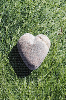 stone_heart_on_algae