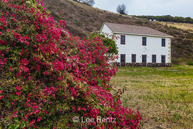 Bougainvillea and Ranch House at Smugglers Cove
