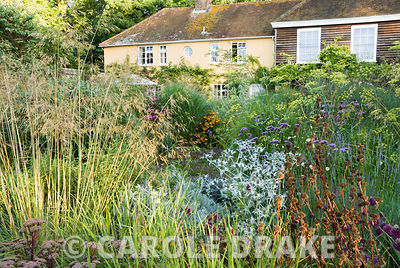 Central circular bed planted with a combination of grasses and herbaceous perennials including Stipa gigantea, Verbena bonariensis, Eryngium x giganteum, Sedum telephium 'Matrona', bronze fennel and Phlomis russeliana. Broughton Buildings, Broughton, nr Stockbridge, Hants, UK