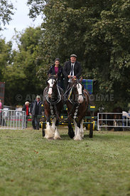 HOY_230314_clydesdales_3545