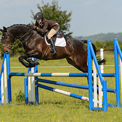 Cottesmore Hunt Pony Club photos