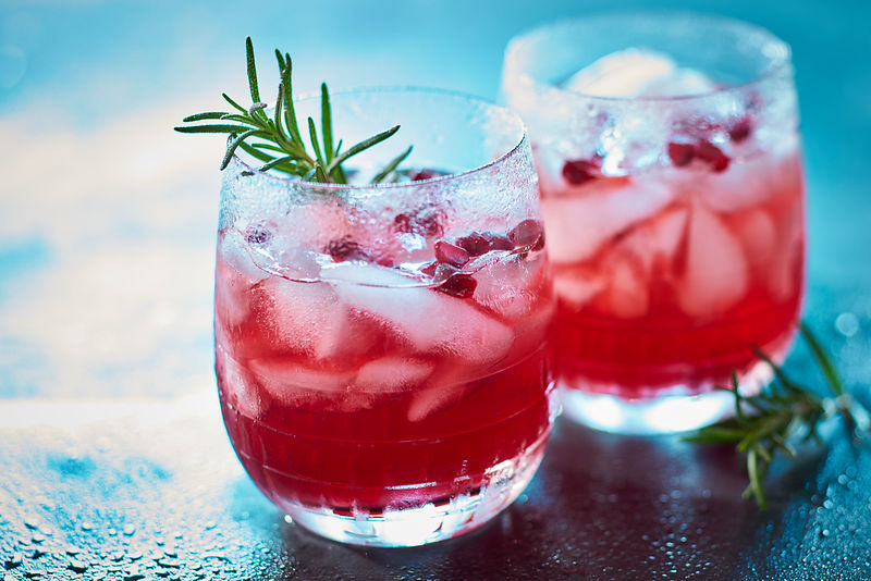 Pomegranate-Rosemary-Gin-Fizz_0379