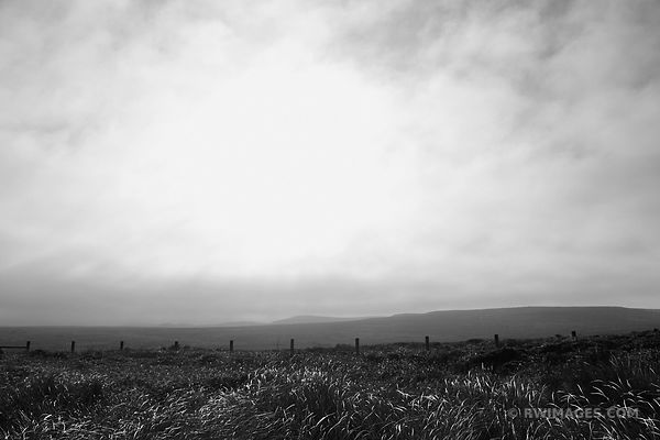POINT REYES NATIONAL SEASHORE CALIFORNIA BLACK AND WHITE