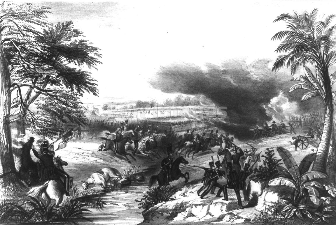 May's dragoons at Palo Alto during war with Mexico