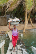 Woman carrying fish over a walking bridge on the Volta estuary, Ada Foah, Ghana