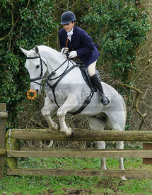 Joanne Rutter jumping a hunt jump near Knossington Spinney