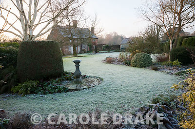 Frosty garden with mixed borders, clipped evergreens, white stemmed birches and a birdbath with Elizabethan house beyond. Coates Manor, Coates, Fittleworth, West Sussex, UK