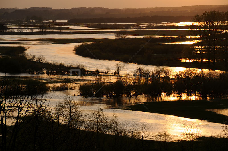 Aerial view of Biebrza marsh, Poland, at sunset