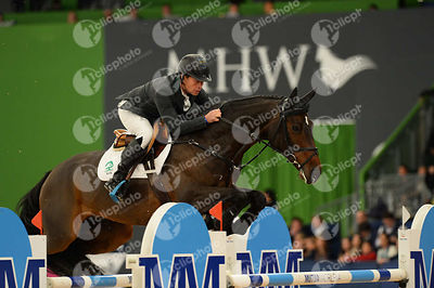 BENGTSSON Rolf-Goran, (SWE), Unita Ask during CSI5-W_1,60_Longines World Cup Grand Prix competition at Madrid Horse Week at IFEMA, Madrid - Spain
