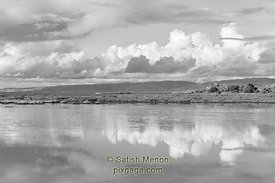 Clouds and Reflection in Water, Alviso, CA, USA
