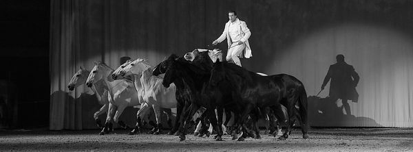 Cheval_Passion_20160123-2013