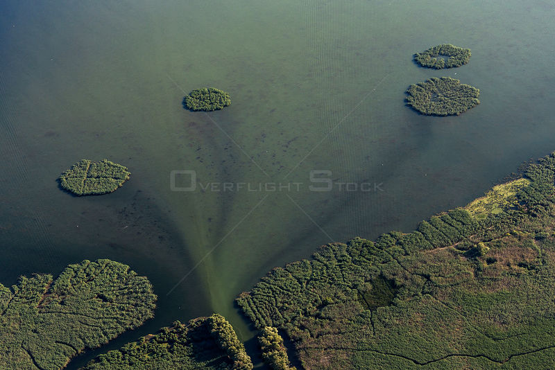 Aerial view of Danube Delta, the second largest wetland in Europe and the largest reed bed in the world, showing reed islands on river mouth, Romania