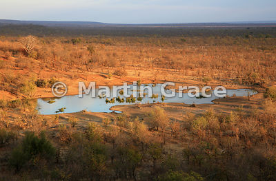 Waterhole and mixed woodland dominated by Mopane (Colophospermum mopane) below Victoria Falls Safari Lodge, Zimbabwe