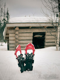 Snowshoes and log shelter