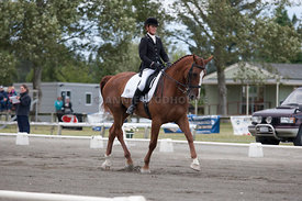 SI_Dressage_Champs_260114_042