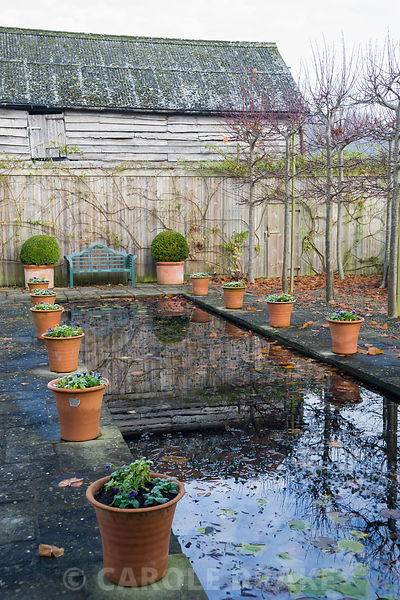 The Canal, framed by pleached limes and terracotta pots, has a wooden seat framed by pots of clipped box at one end.