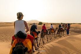 Tourists on camels in the sand dunes of Erg Chebbi in Sahara Desert, Morocco
