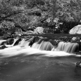 Zion_Narrows_3_Black_and_White