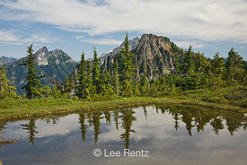 Nearby peaks in the Cascade Mountains viewed from a glacial tarn in Mt. Forgotten Meadows, Mt. Baker-Snoqualmie National Forest, Cascade Mountains, Washington, USA, August, 2008_WA_4604