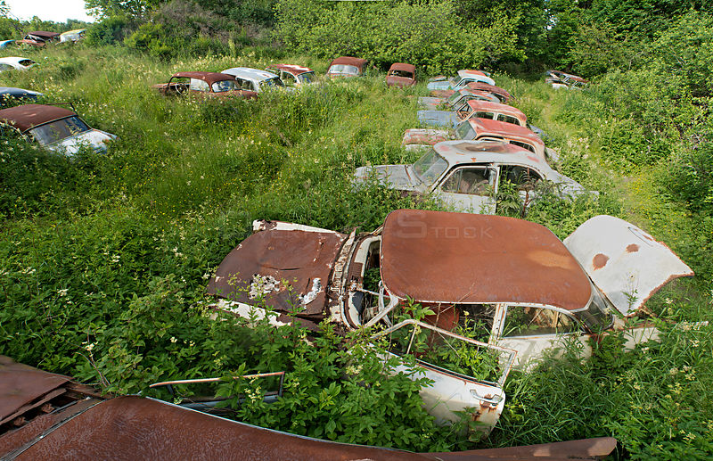 Rusting cars overgrown with plants, Bastnas car graveyard, Varmland, Sweden, July.
