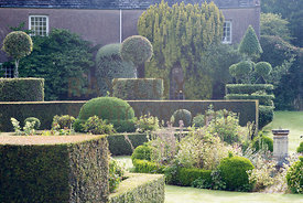 Planting within box hedge compartments and clipped topiary. Parkhead, Roseneath, Helensburgh, Dumbartonshire, Scotland, UK