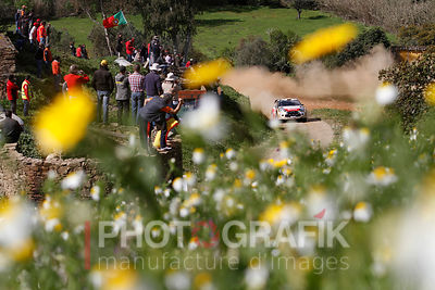 KEY WORDS: SORDO / RALLY / MOTORSPORT / 2013