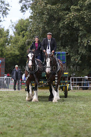 HOY_230314_clydesdales_3546