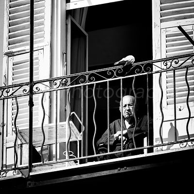 Street Photo - L'homme et la tourterelle