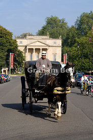 horse drawn carriage on great pulteney street with the holburne museum of art in the distance, bath, somerset.