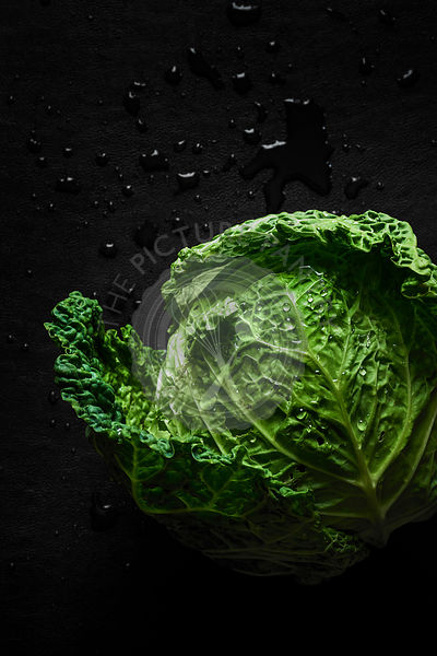 A fresh picked head of vibrant green cabbage with water droplets on a dark surface.
