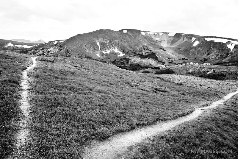 TRAIL FORK MARMOT POINT TRAIL ROCKY MOUNTAIN NATIONAL PARK COLORADO BLACK AND WHITE