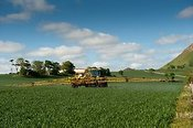 Tractor spraying winter wheat in spring. North Berwick, Scotland