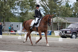 SI_Dressage_Champs_260114_043