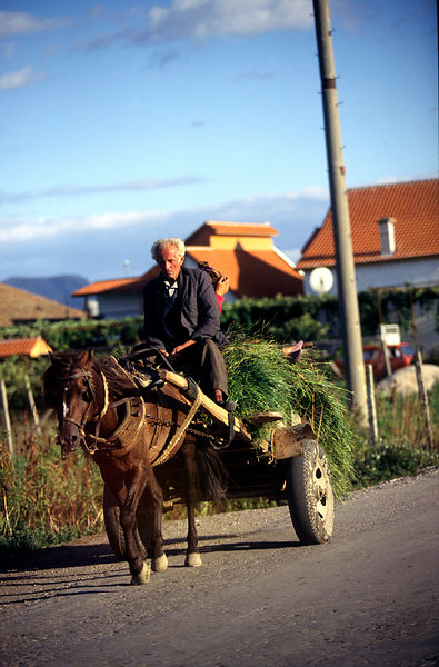 A peasant with his horse and cart