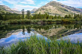 Slate River Beaver Pond - Crested Butte