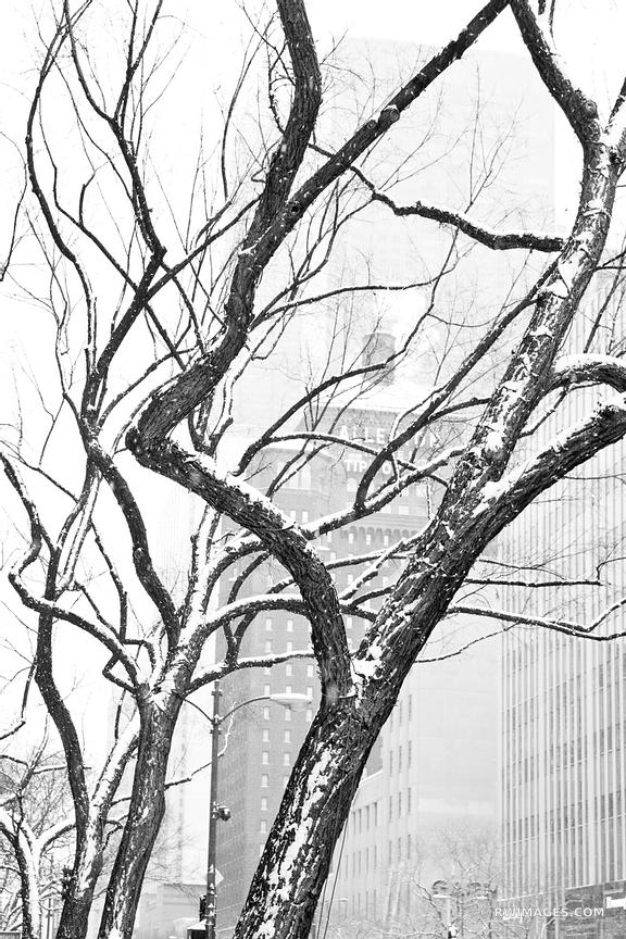 MICHIGAN AVENUE WINTER DAY HEAVY SNOWFALL CHICAGO ILLINOIS BLACK AND WHITE